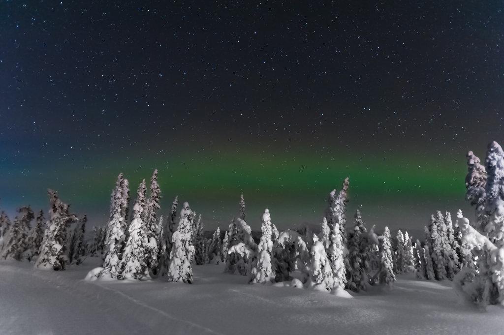 Northern Lights near Chena Hot Springs (Alaska / USA)